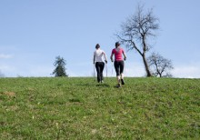 Nordic / Health Walks for Beginners