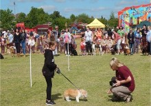 Mosley Common Village Companion Dog Show